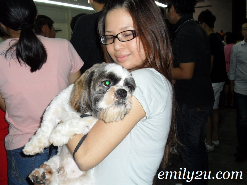 MKA dog show Ipoh