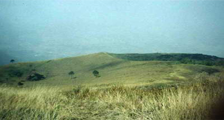 MOUNTAIN GUNTUR