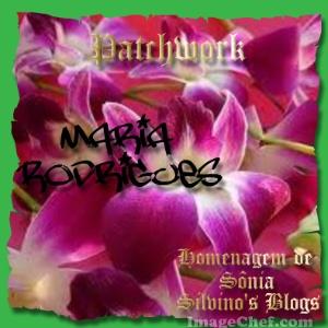 Flores oferecidas pela amiga Sônia