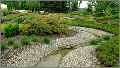 ogród, garden, strumyk