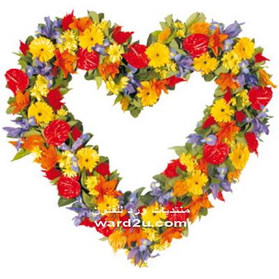 قلوب من الورد فى ورد للفنون