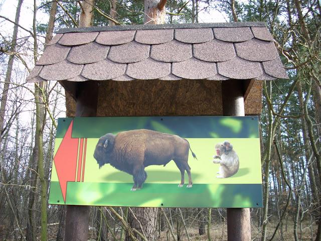 Nowy kierunkowskaz - jeden z kilku, jaki pojawił się w ostatnim czasie w zoo