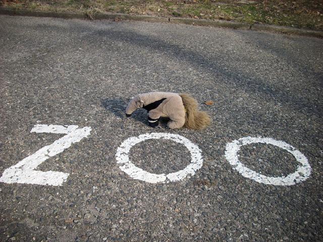 Tadeusz (nie) sam w zoo