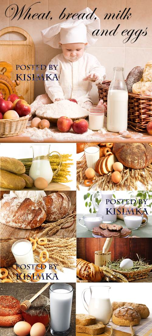 Stock Photo: Wheat, bread, milk and eggs