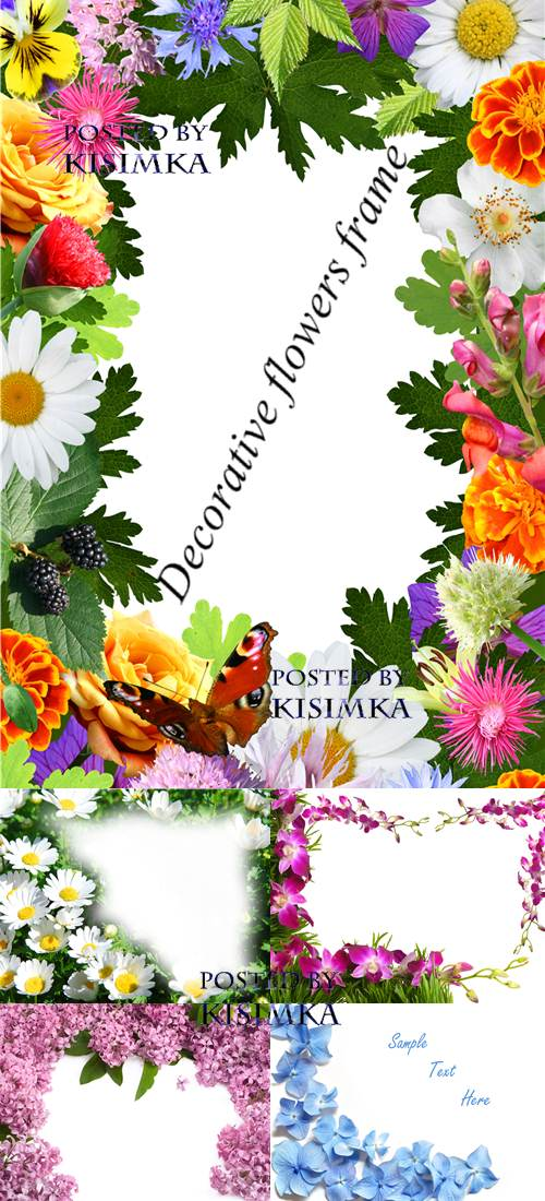 Stock Photo: Decorative flowers frame