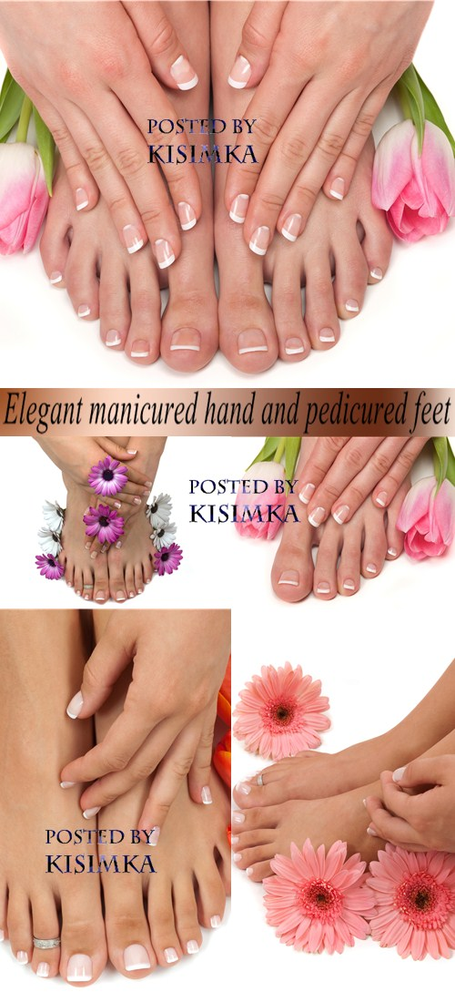 Elegant manicured hand and pedicured feet