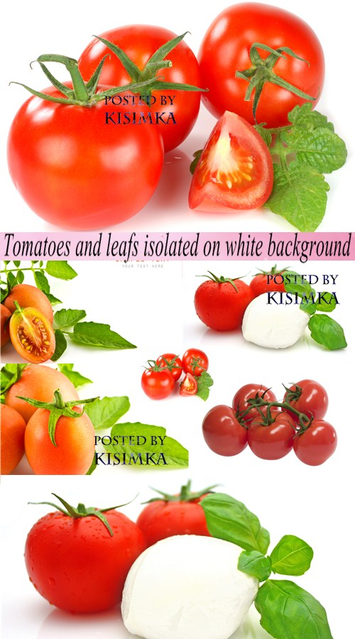 Stock Photo: Tomatoes and leafs isolated on white background