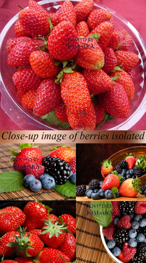 Stock Photo: Close-up image of berries