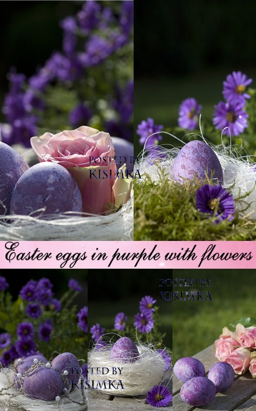 Stock Photo: Easter eggs in purple with flowers