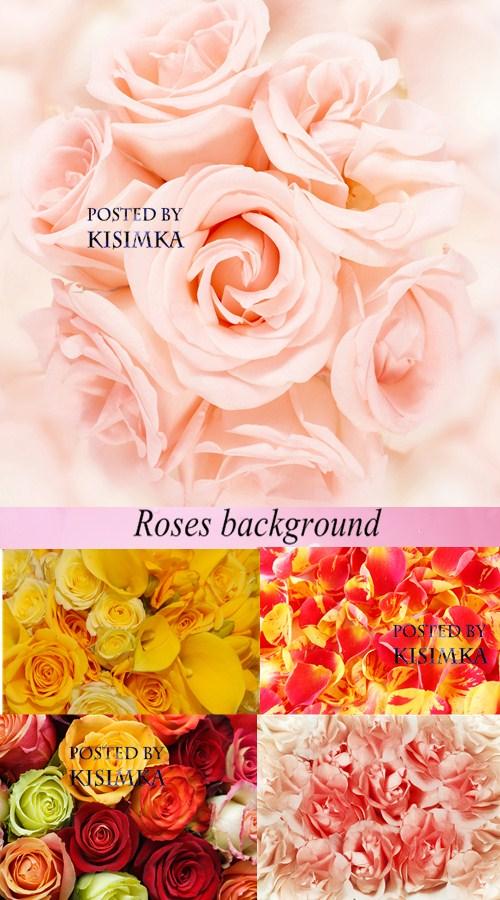 Stock Photo: Roses background