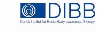 DIBB logo blaa[1] (2)