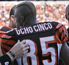 Ochocinco MLS