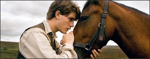 https://lh6.googleusercontent.com/_CPBILrqvMs4/TXvKjV8VSbI/AAAAAAAAAB4/SJonUze2eWI/war-horse.jpg