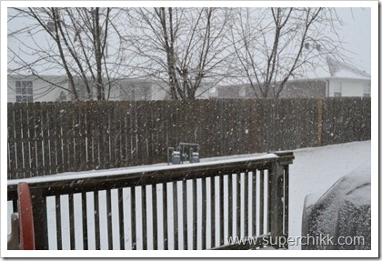 013 Snow Days, February 2011