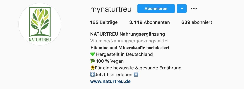 Beispiel Instagram Account