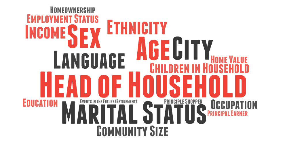 Word cloud showing available audience demographic and psychographic information available.