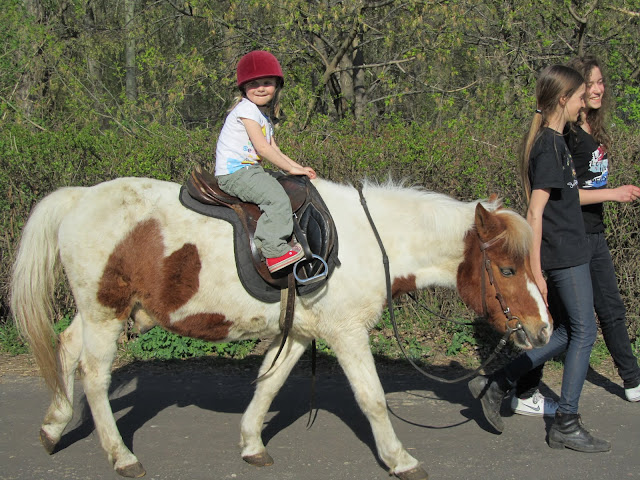 marianna na koniu