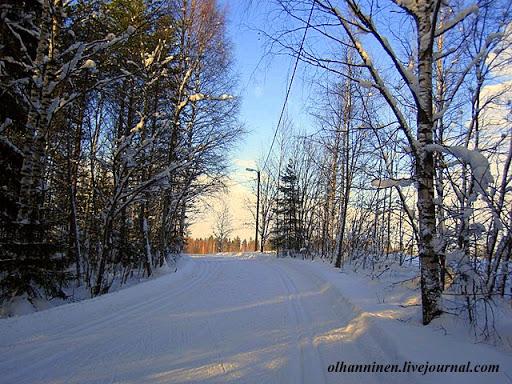 Вдоль лыжни в Финляндии во многих местах стоят фонари