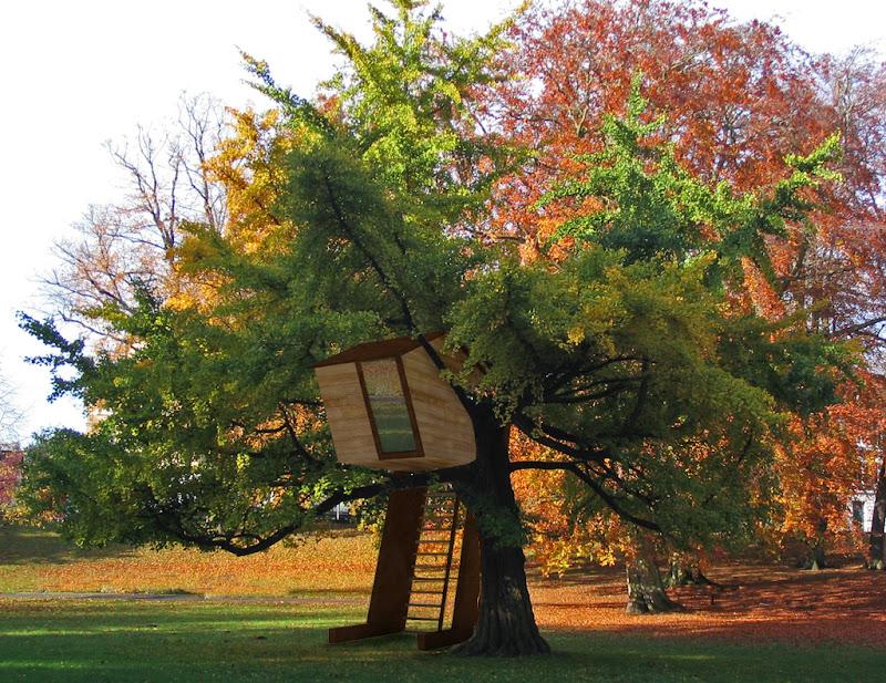 Casa en el árbol AT.