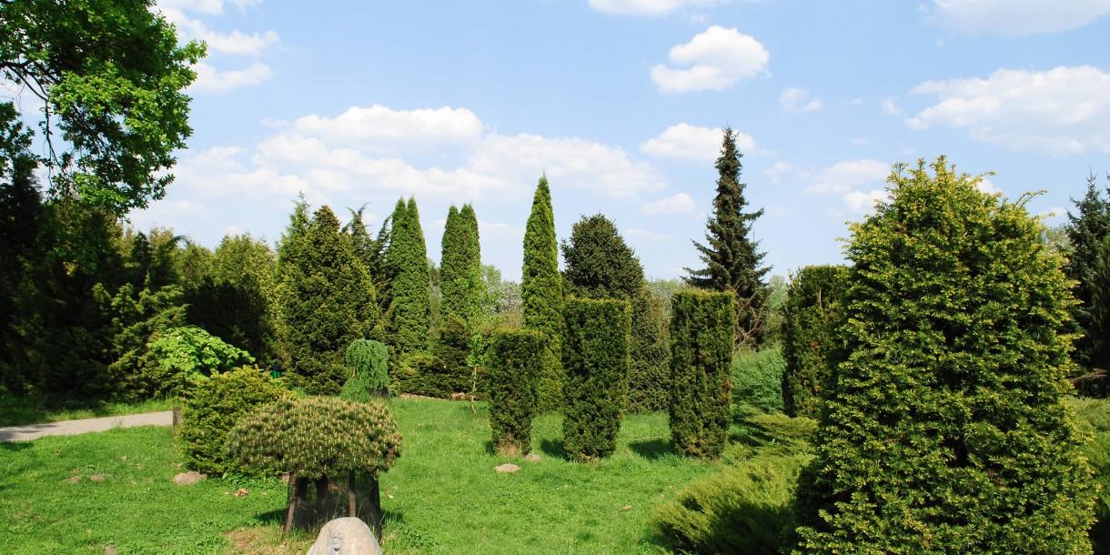 Достопримечательности Минска: Ботанический сад