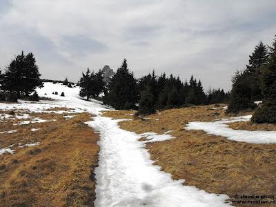 Muntii Ciucas. Carari de munte