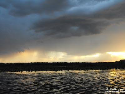 vaslind pe Dunare dupa furtuna