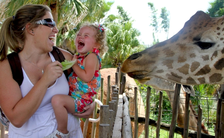 mother and daughter laugh as they feed a giraffe in Tampa, FL