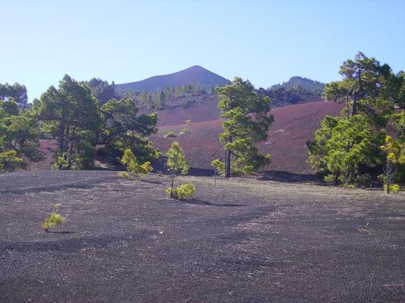 Eindrücke von der Hochebene Llanos de Jable,La Palma,Kanaren