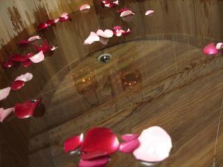 小王子玫瑰园民宿--人文精致住宿∶一个充满植物疗愈力量的香气空间