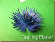 QuillingPlanet_217