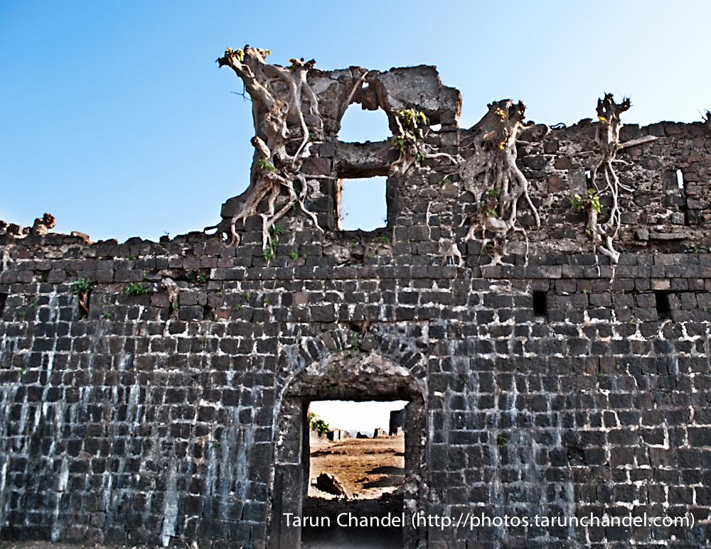 Korlai Ruins, Tarun Chandel Photoblog