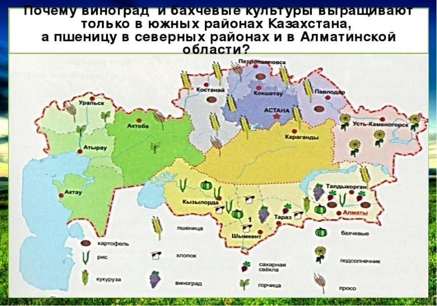 https://ds04.infourok.ru/uploads/ex/058c/00002c9b-26acd0fa/img8.jpg