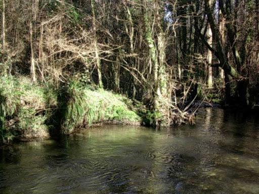 Paseo por el Rio Mandeo R%C3%ADo-Mandeo-14-el-rio