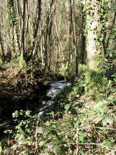 Paseo por el Rio Mandeo R%C3%ADo-Mandeo-32-comienzo-cascada-afluente