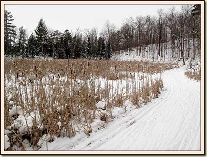 Trail 36 near Lac Meech