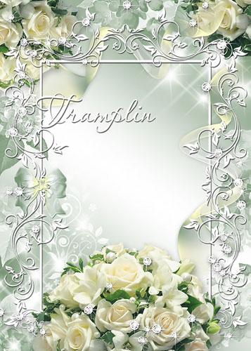 Нежная рамочка с Белыми розами