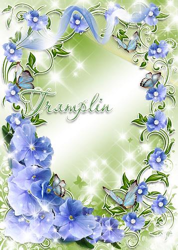 Рамка для фото – Цветы голубые из радужных крыльев