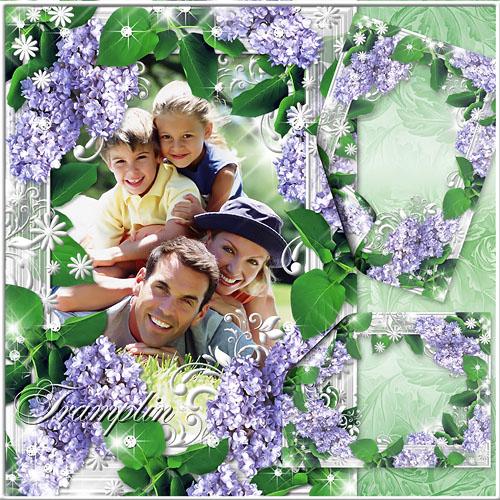 Цветочная Рамка для Photoshop – Сирень цветет