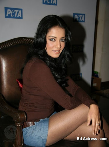 Bollywood Actress Celina Jaitley Photo-03