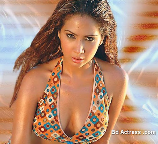 Bollywood Actress Kim Sharma Photo-02