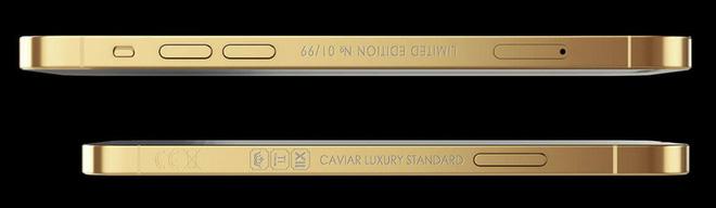 iPhone 12 Pro phiên bản vàng thỏi: đắt tới 4.990 USD mà lại không có cả camera và cảm biến LIDAR - Ảnh 4.