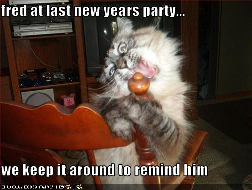 Not Caturday, but since it is New Years this still seemed appropriate
