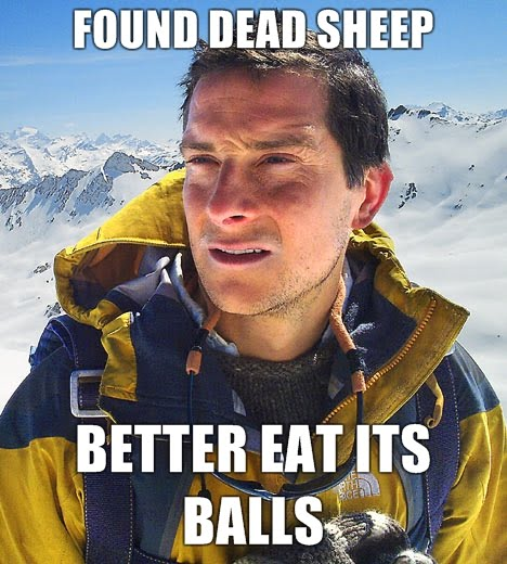 If you don't watch Man vs. Wild, you won't get this