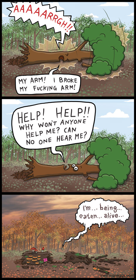If a tree falls in the forest and there is nobody around to hear it...