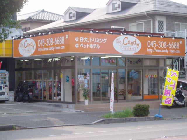 神奈川県 横浜駅 ペット ペットショップ お店の一覧 …
