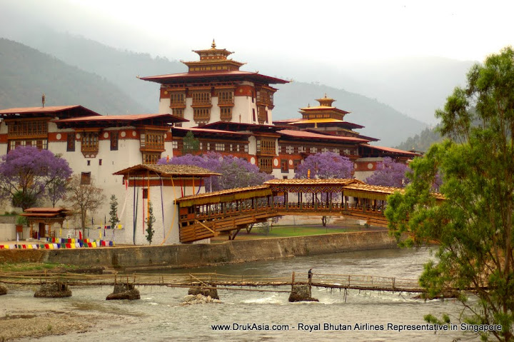Punakha Dzong in full spring blossoms