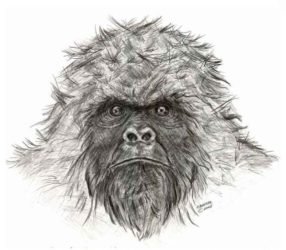 Sasquatch Front View by Patricia Baker