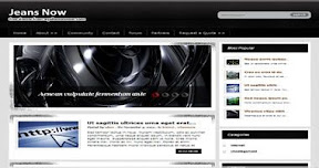 Jeansnow Wordpress Theme