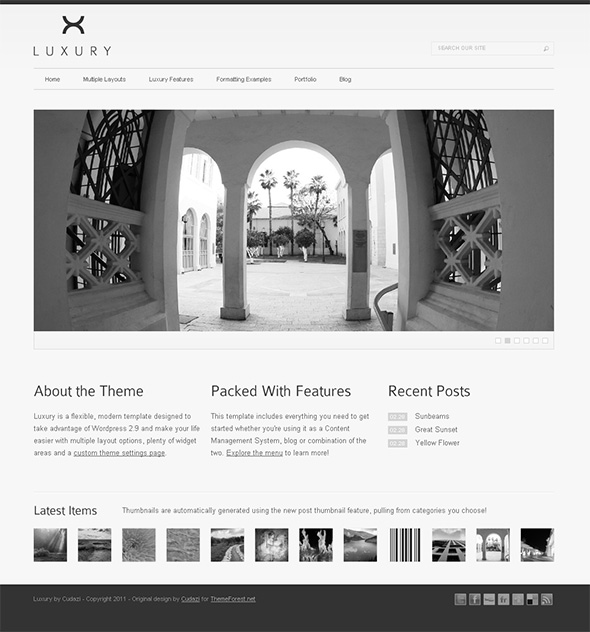 Luxury Professional WordPress Theme