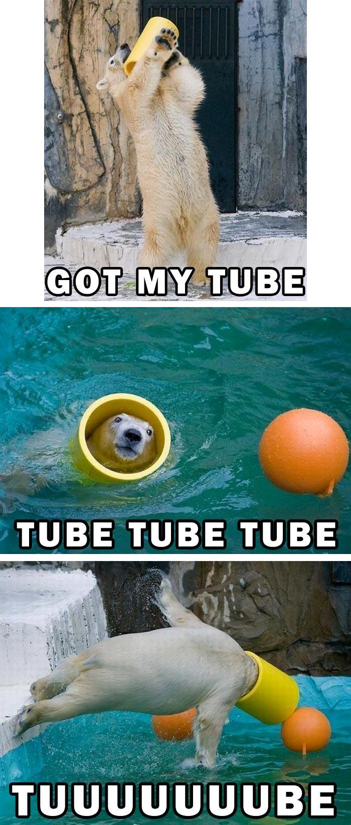 Tube Bear